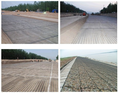 Durable 50KNM Polyester Geogrid with High Strength for Dike Slope