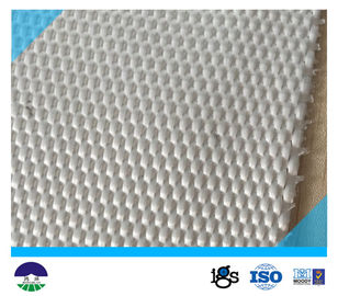 चीन 460G Multifilament Woven Geotextile For Separation Basal Reinforcement आपूर्तिकर्ता