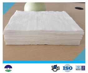 चीन High Permeability Filament Non Woven Geotextile Fabric High Strength 800G आपूर्तिकर्ता